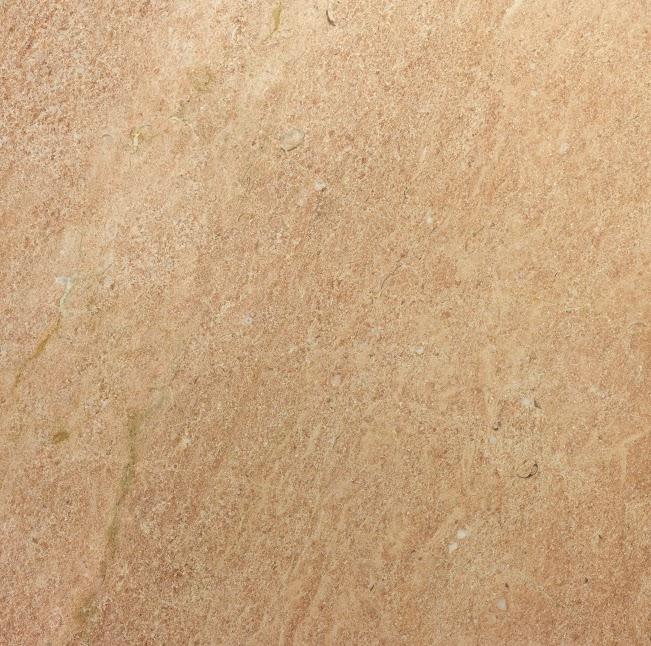 Rosa Levante P tono1
